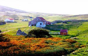 falkland-islands_2