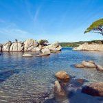 palombaggia-beach-sunny