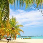 Découvrir la Jamaïque et ses nombreux trésors naturels