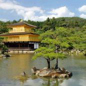Les immanquables à voir au Japon lors d'un séjour