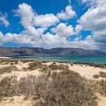 île Canarie