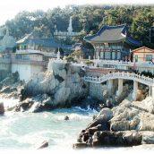 Quelques adresses immanquables à visiter le temps d'un voyage en Corée du Sud