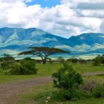 Mountains_of_the_Serengeti