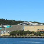 Wellington,_Te_Papa_Tongarewa,
