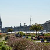 Bordeaux, lien entre philosophie et vignobles