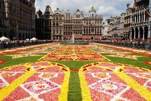 Bruxelles tapis de fleurs