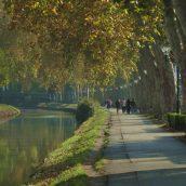 Quelques conseils pour bien profiter de votre séjour à Toulouse