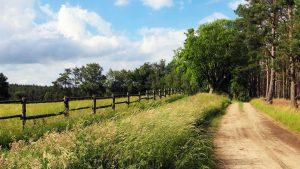 Lane Limousin en France