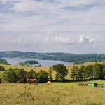 Paysage Limousin