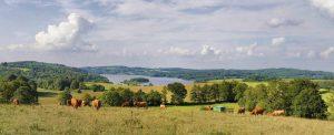 Paysage du Limousin en France