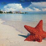 Bahamas : 2 bonnes raisons d'y aller pour les prochaines vacances