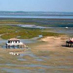 Bassin d'Arcachon Cabanes tchanquées