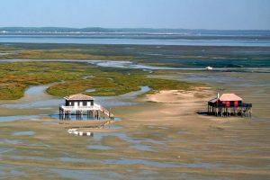 Bassin d'Arcachon les Cabanes tchanquées en France
