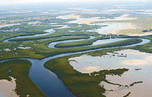 Parc National du delta du Saloum lorsd'un séjour solidaire au Sénégal