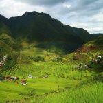 Les rizières en terrasse de Banaue sur l'île de Luçon aux Philippines