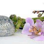 nature-branch-blossom-plant-wood-flower-1210710-pxhere.com