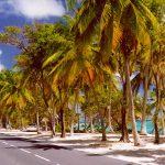 Archipel des Petites Antilles, l'île de Marie-Galante en Guadeloupe