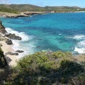 Les bonnes raisons de partir en vacances en Martinique