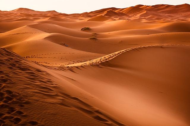 Désert Marocain