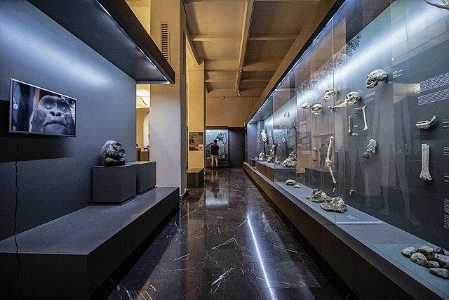 Le musée national géorgien à Tbilissi en Géorgie