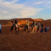 Tous les aspects du circuit dans le sud du Maroc