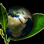 Conseils pour être éco-responsables