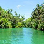 La riviere Loboc a Bohol