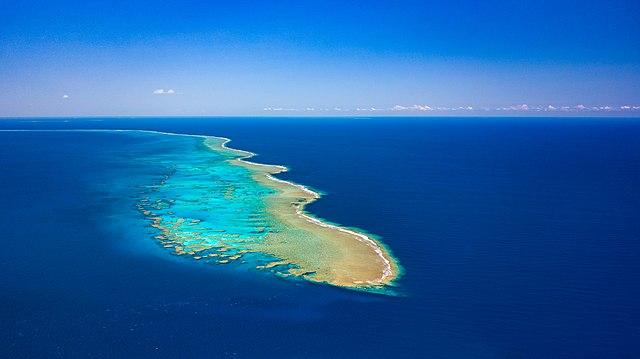 Recif corallien Nouvelle Caledonie