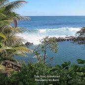 Top 3 des activités à ne pas rater à Manapany-Les-Bains à la Réunion