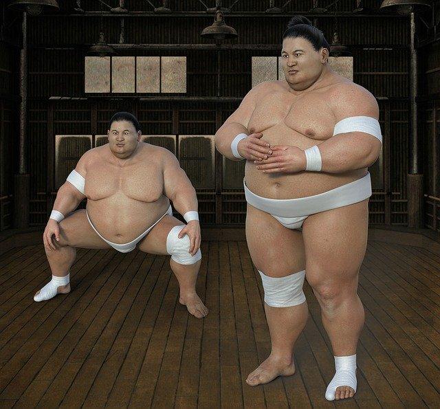 Sumo Sumoringer au Japon