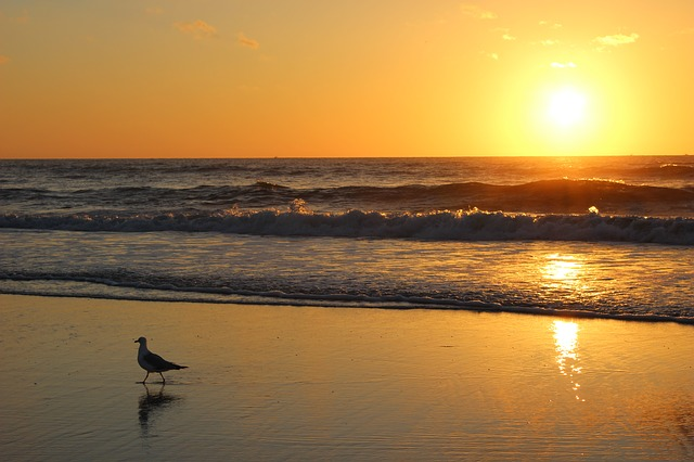 Jacksonville Beach