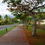 Balade Fidji