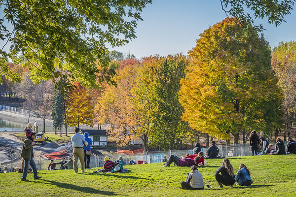 Parc Mont Royal Montreal Canada