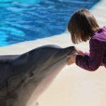 enfant et dauphin